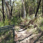Entering Ku-ring-gai Chase National Park