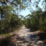 The Warrimoo Track
