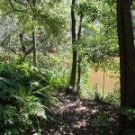 Following Cowan Creek