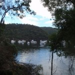 View from Berowra track