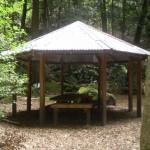 Leura Forest Pagola