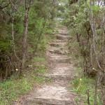 Fort Rock Track