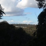 View across to Blaxland