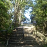 Steps near int of Prince Henry Cliff Walk and Reids Plateau loop