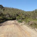 Thommos Loop trail