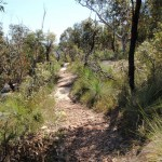 track below Mount Wondabyne