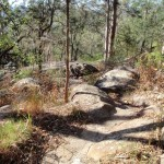 Meander through the rocks