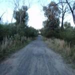 Tunnel track near Woy Woy Rd