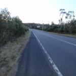Walking beside Woy Woy Rd