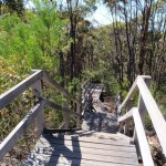 Timber stairs south of Warrah trig