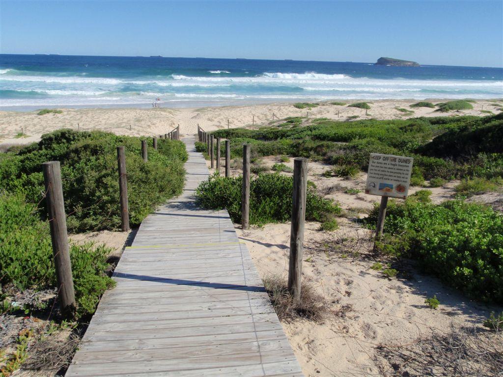 Tea Tree Picnic Area to Birdie Beach walking track