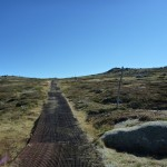 Passing the snow pole line on the Mt Kosciuszko path