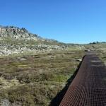 Mt Kosciuszko Walk
