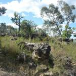 Rocks next to Elvina Track