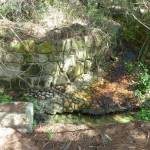 Creek/culvert on Perimeter Trail