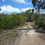 Smiths Creek Trail, near Terrey Hills