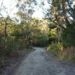 Cullamine Rd, near Terrey Hills