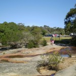 Wattamolla, path north of carpark