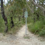 Most of this trail is bushtrack so bike riders are discouraged