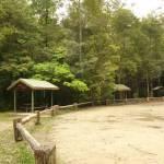 Boarding House Dam Picnic area near Watagan Forest Rd in the Watagans