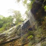Gap Creek Falls in the Watagans