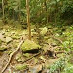 Large rocks at the base of the Gap Creek Falls in the Watagans