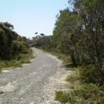 Beachcomber Rd Service Trails