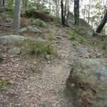 Quarry Rd track