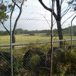 The large fenced in clearing