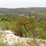 Coast Track view fo Wattamolla