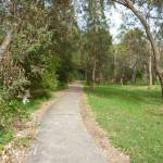 Footpath through forest on the Owens Walkway in Redhead