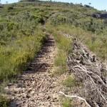 Flat Top Track