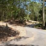 Trail near Richley Reserve in Blackbutt Reserve
