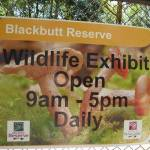 Blackbutt Reserve 'Wildlife Exhibits' sign in Carnley Ave Reserve