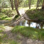 Six Foot Track crossing Mitchells Creek