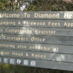Welcome to Diamond Head camping ground