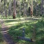 Acacia Flats Camping Area