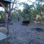 Bottom of Girrakool picnic area