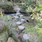 Piles Creek stepping stones