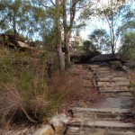Steps to Warrah Trig Station