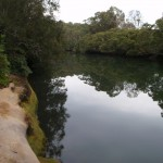 Rocky edge to Lane Cove river