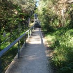 Steps between balmoral park and Middle head road