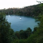 Lookout over Taylors Bay