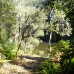 Berowra creek