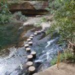 Berowra creek Stepping stones
