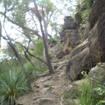 Climbing up from Berowra Waters