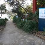 Track near Taronga Wharf