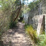 Track behind Taronga Zoo