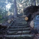 stone steps leading up out of Berowra Valley