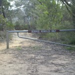 Katoomba End of 6 Ft Track